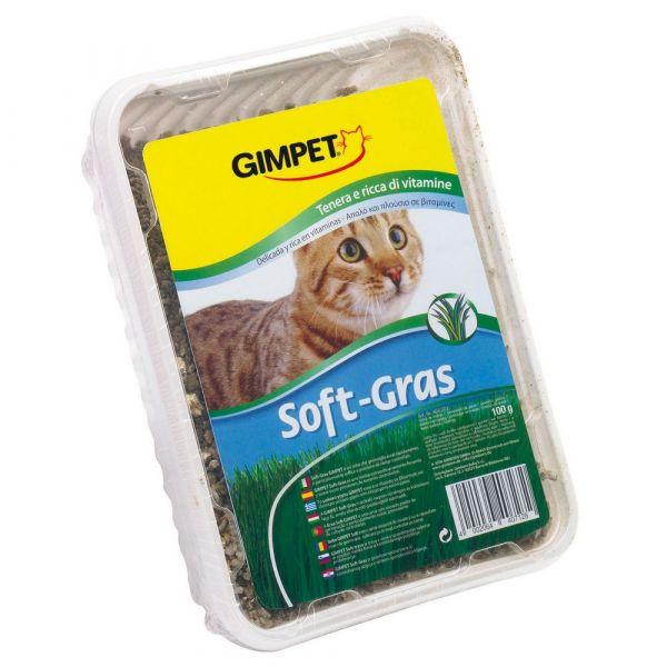 Erba gatto soft gras gimpet gr. 100