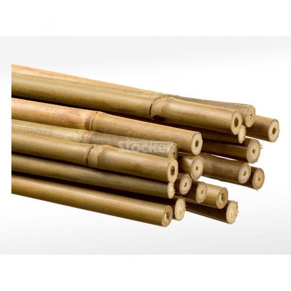 Reggipiante bamboo cm. 180