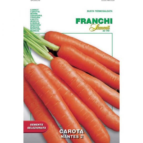 Semente selezionata carota nantes 2