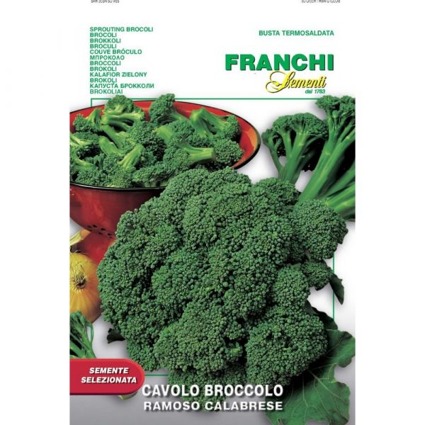 Semente selezionata cavolo broccolo ramoso calabrese
