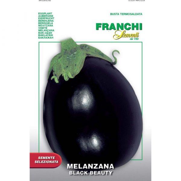 Semente selezionata melanzana black beauty