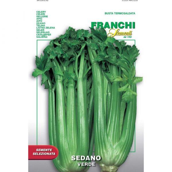 Semente selezionata sedano verde