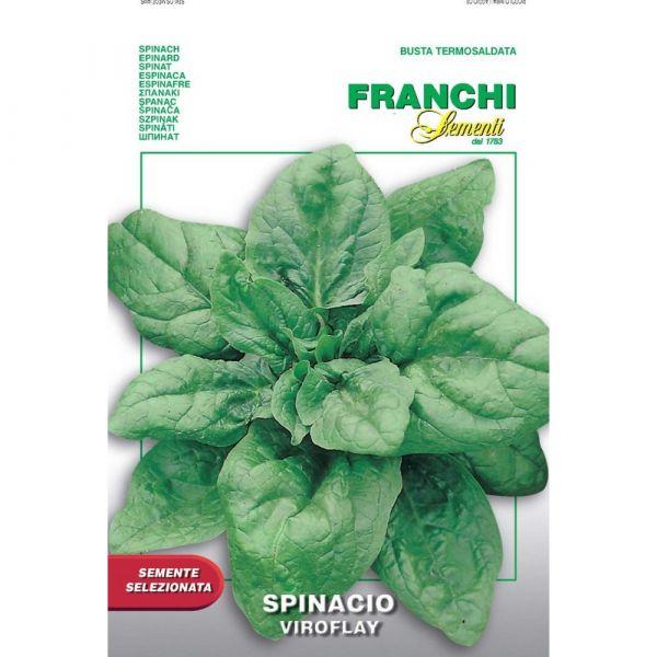 Semente selezionata spinacio viroflay