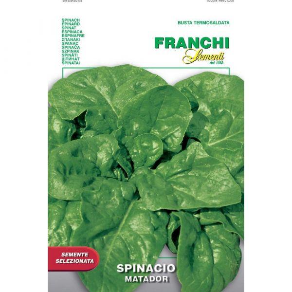 Semente selezionata spinacio matador