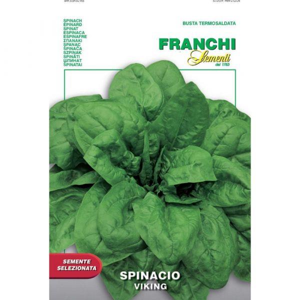 Semente selezionata spinacio viking