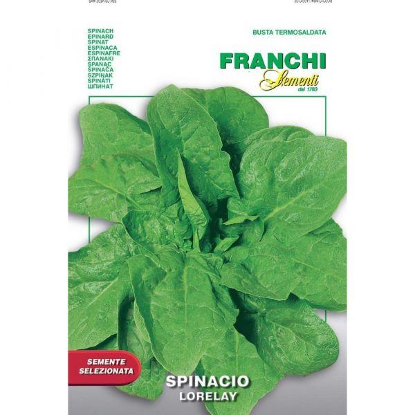 Semente selezionata spinacio lorelay