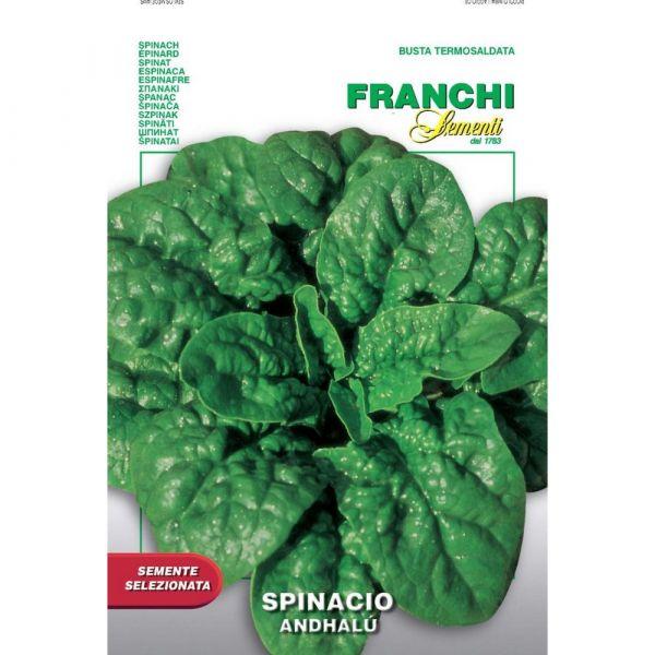 Semente selezionata spinacio andhal
