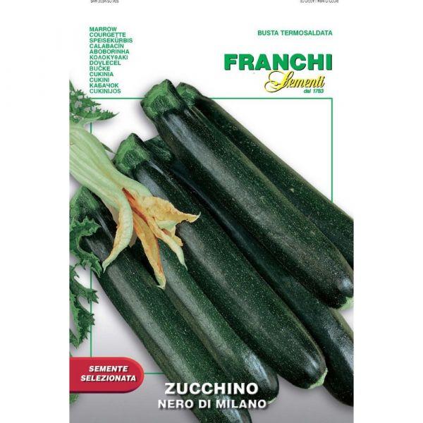 Semente selezionata zucchino nero di milano