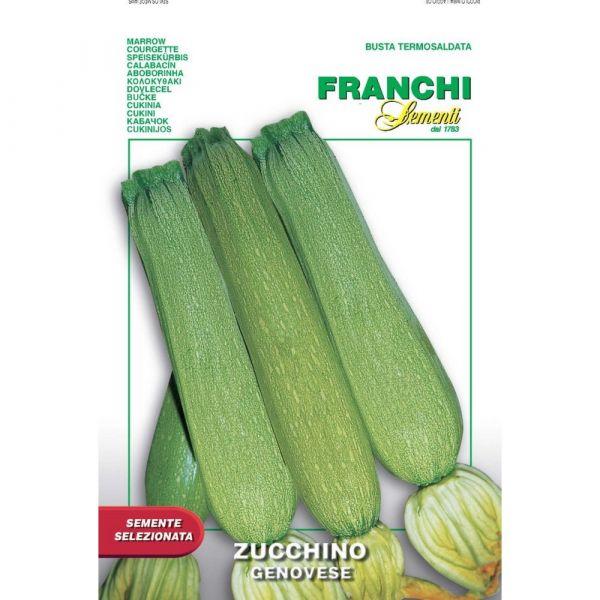 Semente selezionata zucchino genovese