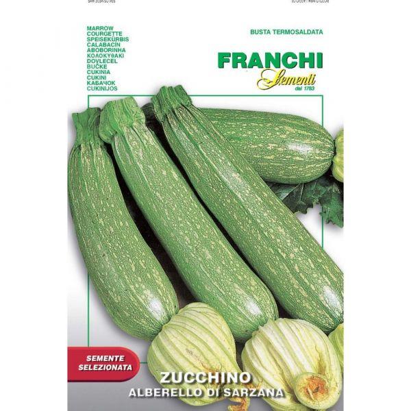 Semente selezionata zucchino alberello di sarzana
