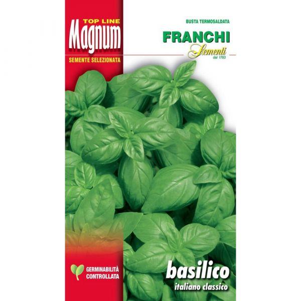 Semente magnum basilico italiano classico