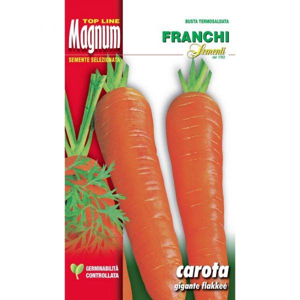 Semente magnum carota gigante flakkee