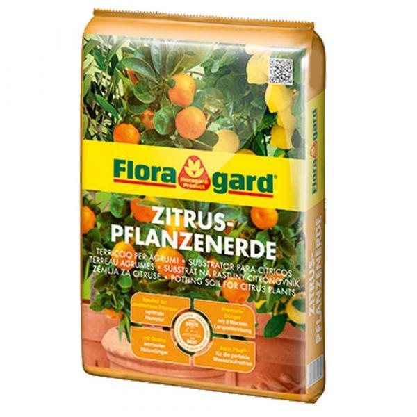 Terriccio per agrumi floragard