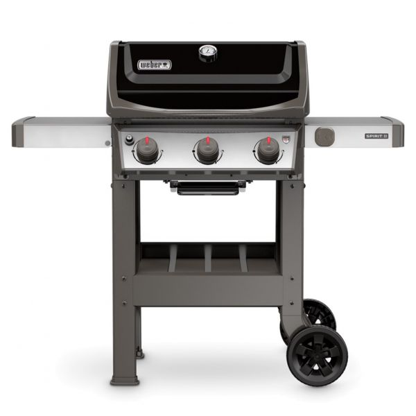 Barbecue spirit 2 e310 gbs a gas
