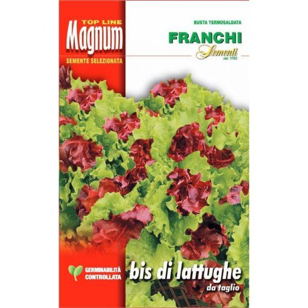 Semente magnum bis di lattughe da taglio
