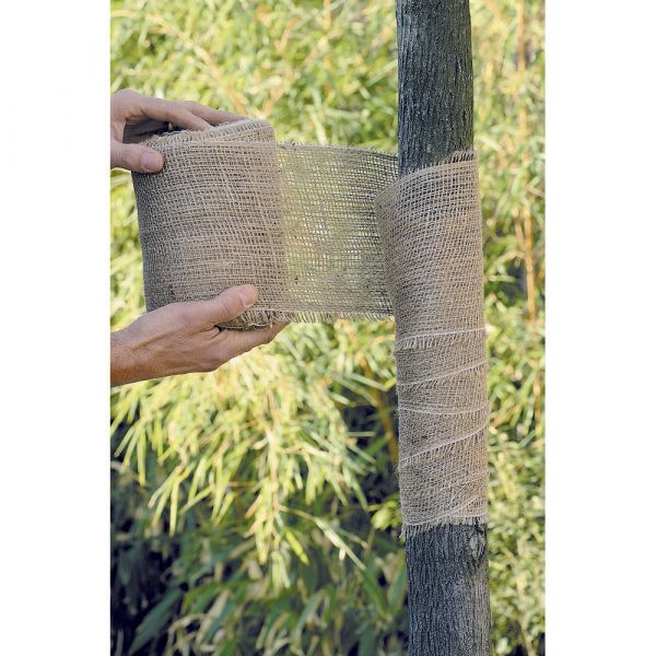 Fascia per tronco albero gr. 750
