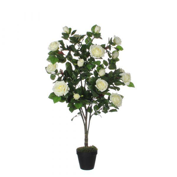 Vaso di rose crema dimensioni: 120x60 cm
