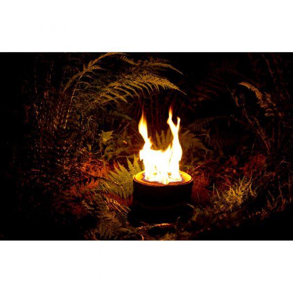 Barbecue genesis 2 e210 nero weber a gas