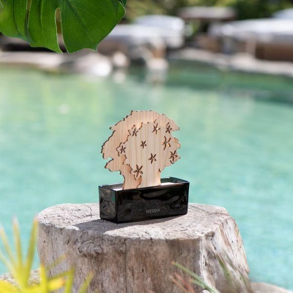 alberello-diffusore-esteban-ylang-ylang1