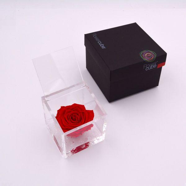 Flowercube   Rosa stabilizzata colore rosso (8x8 cm)