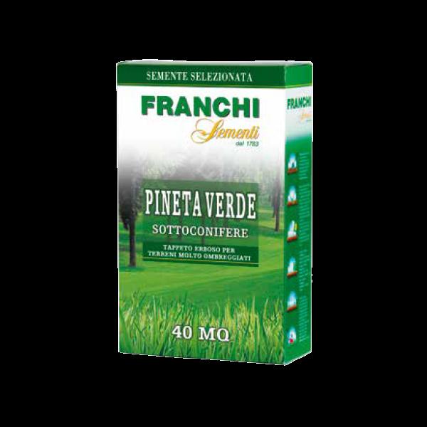 franchi-sementi-pineta-verde-sottoconifere