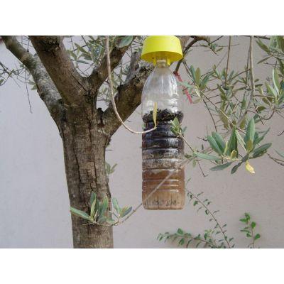 Trappola tap trap per insetti volanti bayer pz. 5