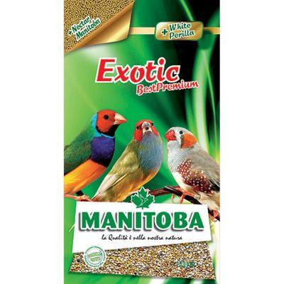 Mangime per uccelli exotic manitoba kg. 1