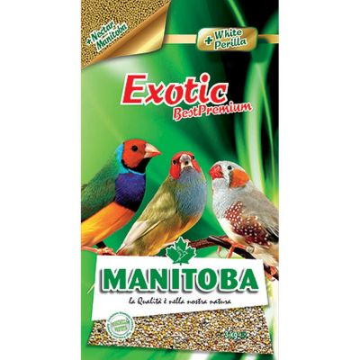 Mangime per uccelli exotic manitoba kg. 3