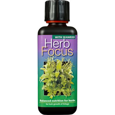 Herb focus 300ml