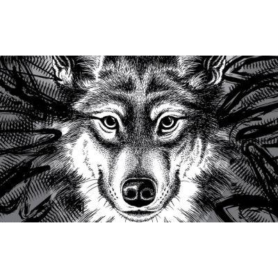 Zerbino in cocco al lupo al lupo