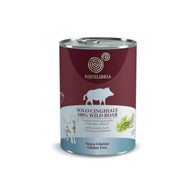 Equilibria dog cinghiale
