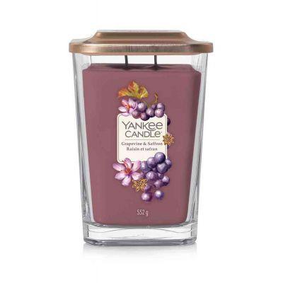 Elev. grapevine & saffron
