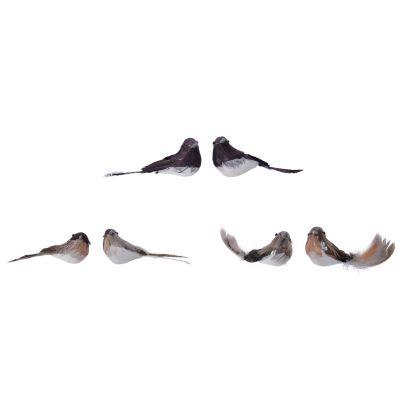 Fthr bird on clip 3col ass br