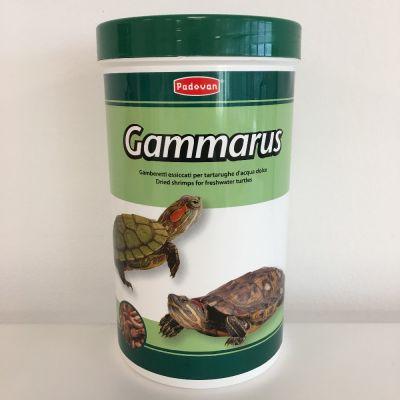 Gamberetti essicati
