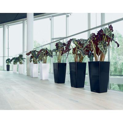 Vaso cubico lechuza con set di irrigazione nero cm. 30