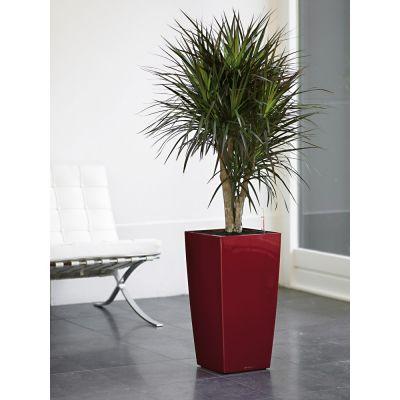 Vaso cubico lechuza con set di irrigazione rosso cm. 30