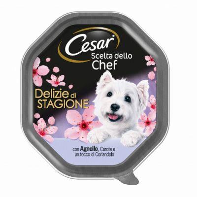 Cesar vasc de agnello carot co
