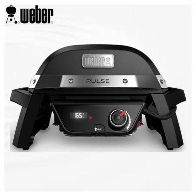 Barbecue pulse 1000
