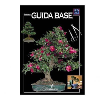 Guida base bonsai