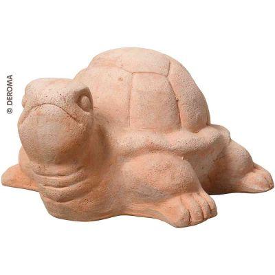 Tartaruga terracotta