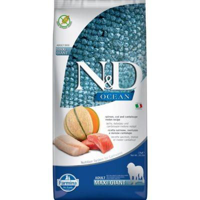 N&d ocean dog salmon