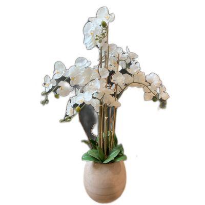 Vaso phalaenopsis 6 rami artificiale