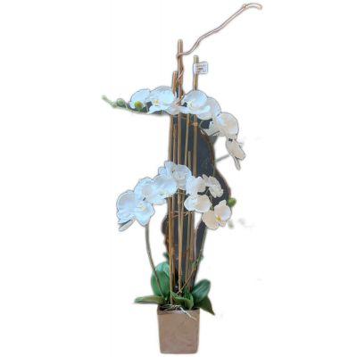 Vaso phalaenopsis 2 rami artificiale