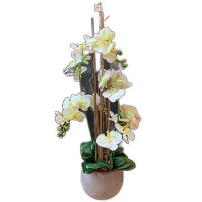 Vaso phalaenopsis 4 rami artificiale