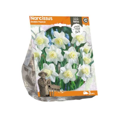 Narciso double popeye