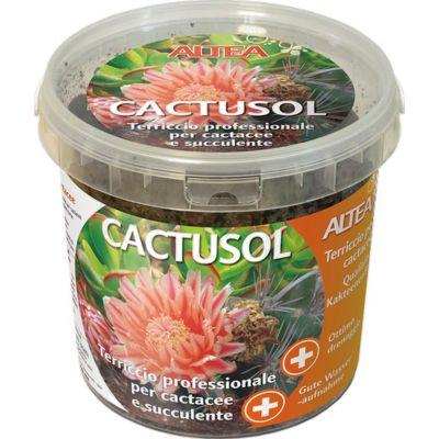 Terriccio per cactus Altea Cactusol