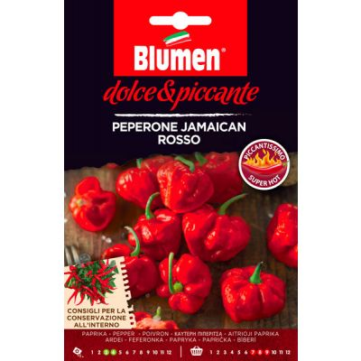 Peperoncino Jamaican Rosso
