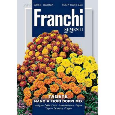 Tagete nano fiori doppi db semi
