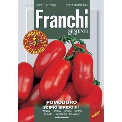 Pomodoro scipio(ex.ast)f1