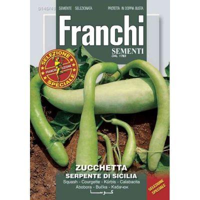 Zucchetta serpe.sicilia